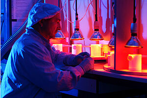 man in a lab with lamps